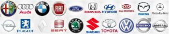 Wij zijn Geïnteresseerd in Verschillende Auto's